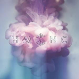 Hmgnc-Hmgnc